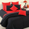 Magical Linea Fitted Bed Sheet - 5603