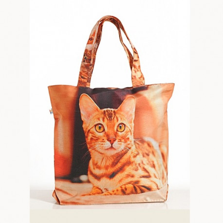 Orange Cat Animal Theme Bag- Cats-3